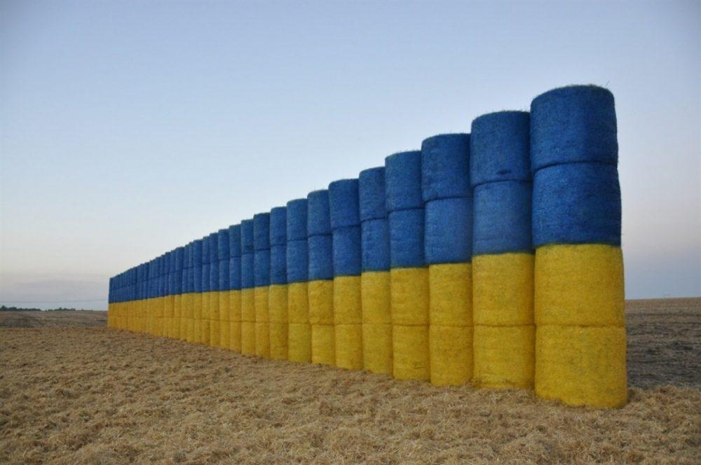 Довжелезний солом'яний синьо-жовтий прапор на Тернопільщині претендує на рекорд України (ФОТО)