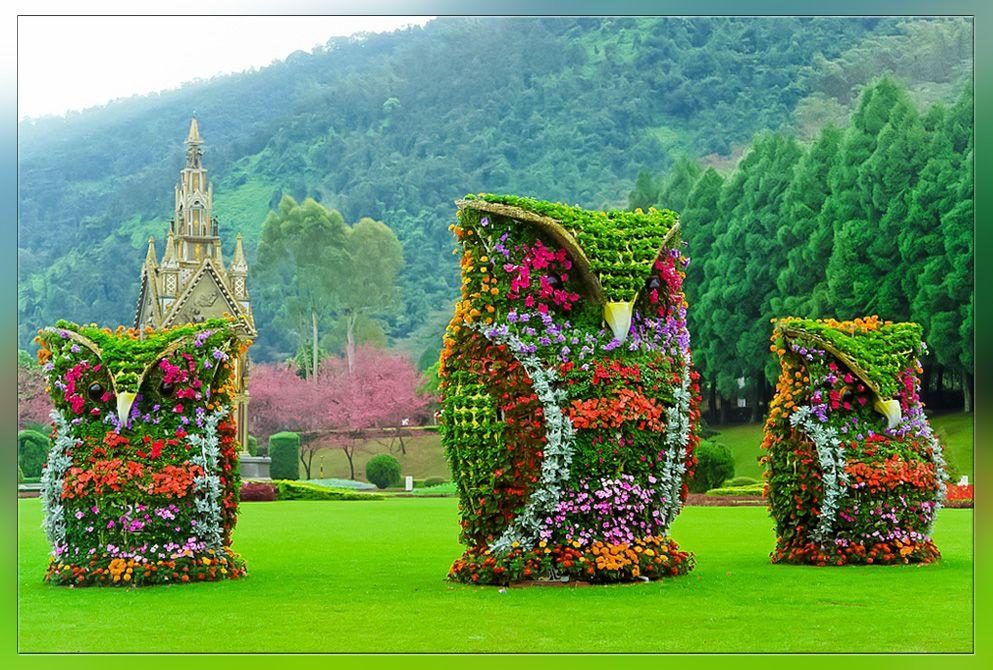 За кращі квіткові композицій до Дня міста тернополяни отримають цінні подарунки