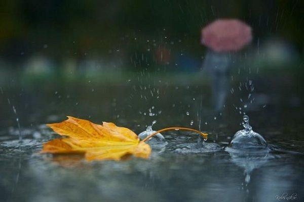 На Тернопільщині передбачають холодні дощові вихідні