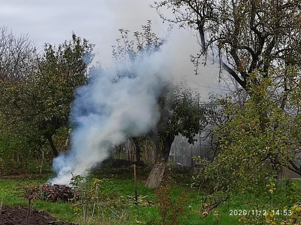 """У Тернополі """"на гарячому"""" спіймали паліїв листя. Що їм за це буде? (ФОТО)"""