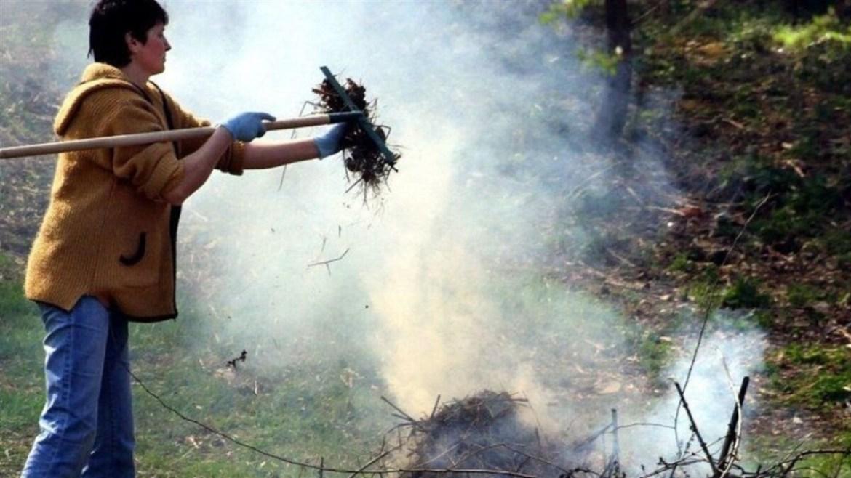 Недобросовісні жителі Тернопільщини продовжують палити траву