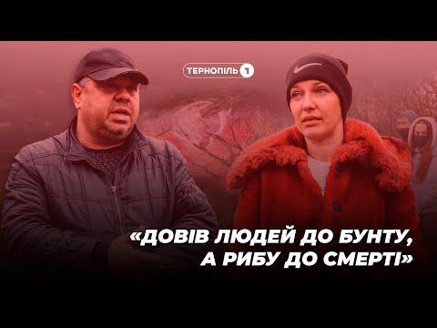 """""""Довів людей до бунту, а рибу до смерті"""" – скандал довкола ставка на Тернопільщині (ВІДЕО)"""