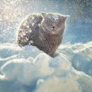 На Тернопільщину насувається арктична холоднеча