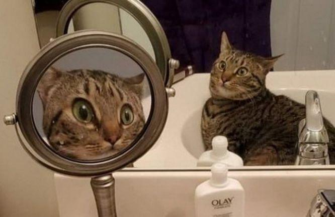 У Тернополі чоловік злякався себе, коли глянув у дзеркало: викликали швидку