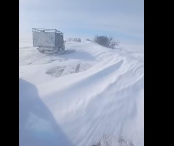 Снігові пастки: негода продовжує вирувати на Тернопільщині, у сніговому полоні опинилось чимало автомобілістів (ВІДЕО)