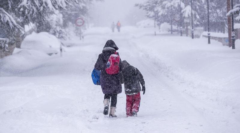 Як вирішать батьки: 12 лютого тернопільські учні можуть не йти до школи