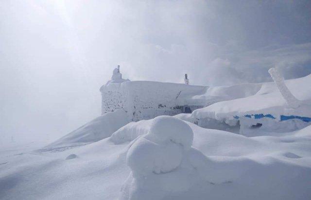 Карпати рясно засипало снігом: краєвиди виглядають казково (ВІДЕО)
