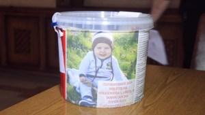 Творити добро: Тернопільська районна рада закликала підтримати сім'ю Борис