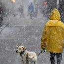 Синоптики обіцяють мороз, сніг та дощ наступного тижня