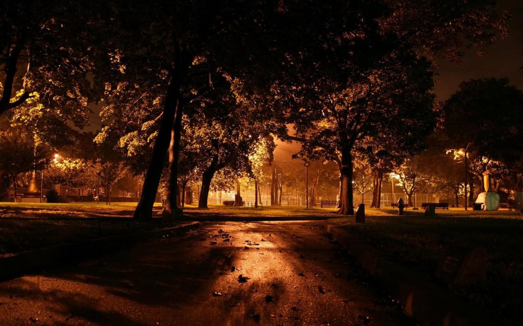 У Тернополі в парку напали, побили та пограбували чоловіка (ФОТО)