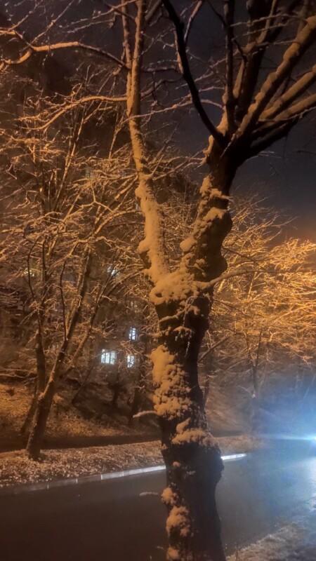 До Тернополя повернулася зима. Чи надовго? (фоторепортаж)