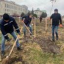 Алея майбутнього: у Мишковичах посадили 300 червоних дубів