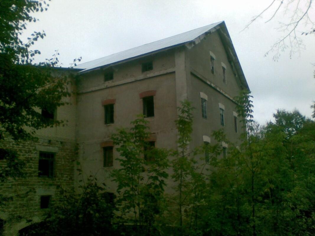 На Тернопільщині продають млин, якому понад 100 років (ФОТО)