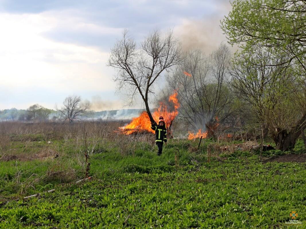 """Підпалювачі очерету… ледь не спалили """"Водну арену """"Тернопіль"""""""