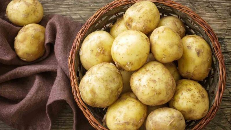 Дожилися: на Тернопільщині – дефіцит картоплі, імпортують з Білорусі