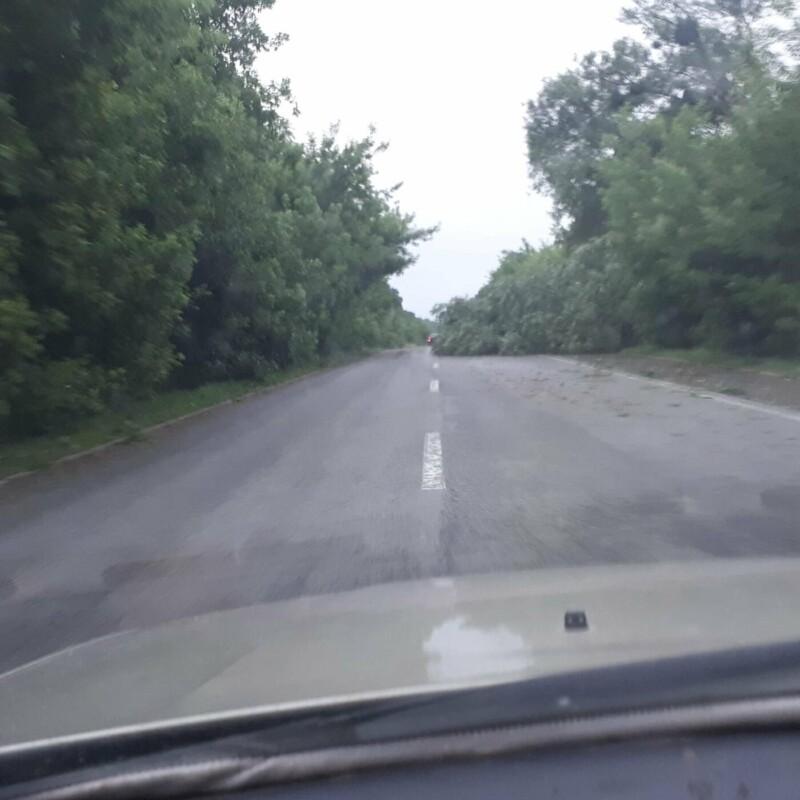 """""""Дороги нема"""": з'явилося відео наслідків стихії на Тернопільщині (ФОТО, ВІДЕО)"""