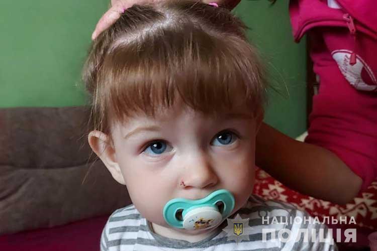 """""""Пішла у невідомому напрямку"""": на Тернопільщині пропала 2-річна дівчинка (ФОТО)"""