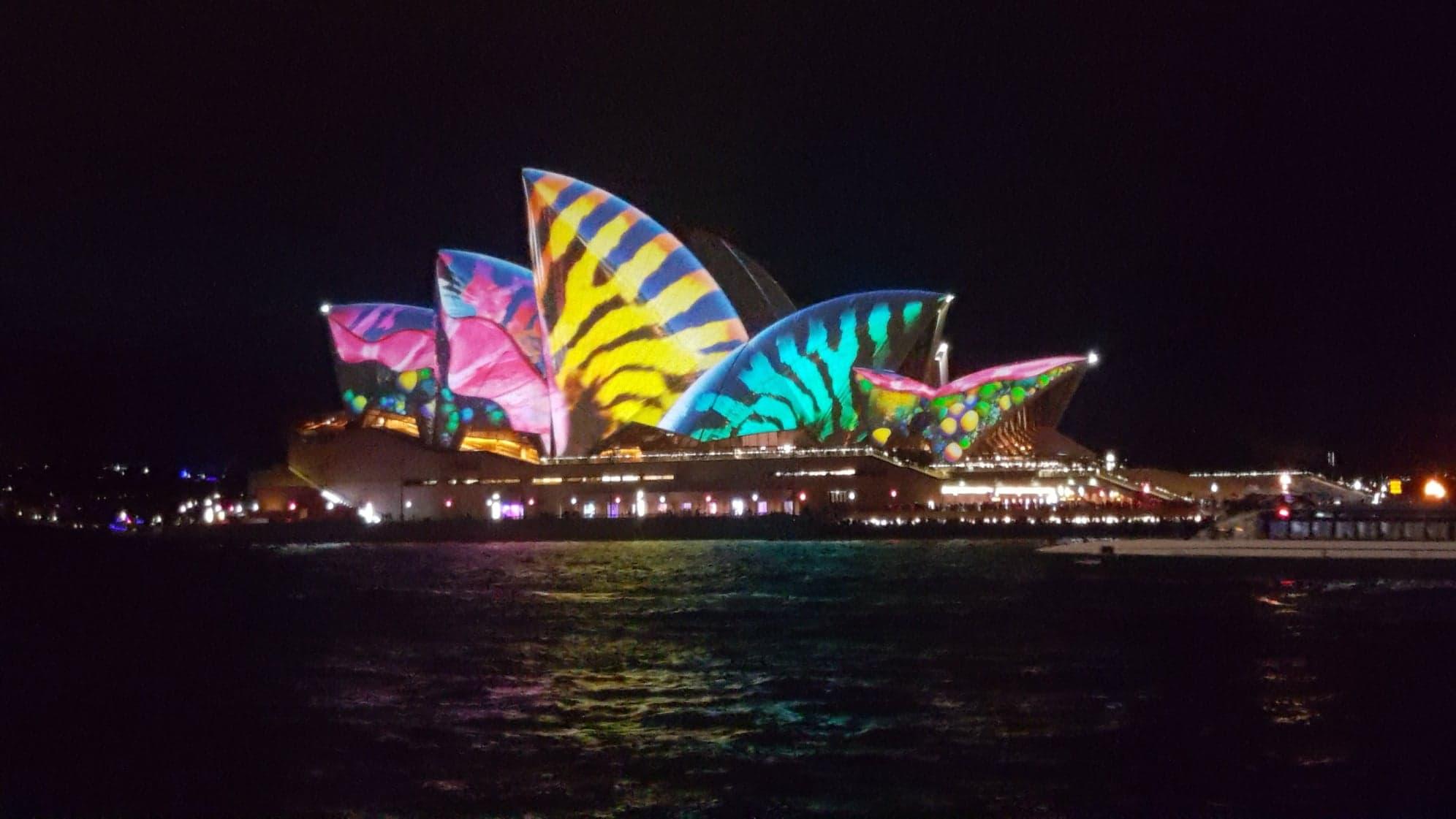 """""""Кенгуру постійно скаче, тому такий смак"""": тернополянка розповіла про життя в Австралії (ФОТО)"""