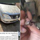 """""""Думала, що знепритомнію"""": у Чорткові невідомі побили автомобіль та перерізали гальма (ФОТО)"""