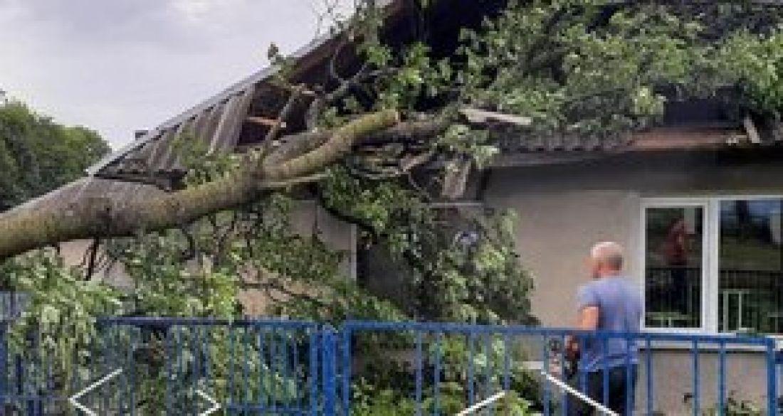 У селі поблизу Тернополя дерево проламало дах школи