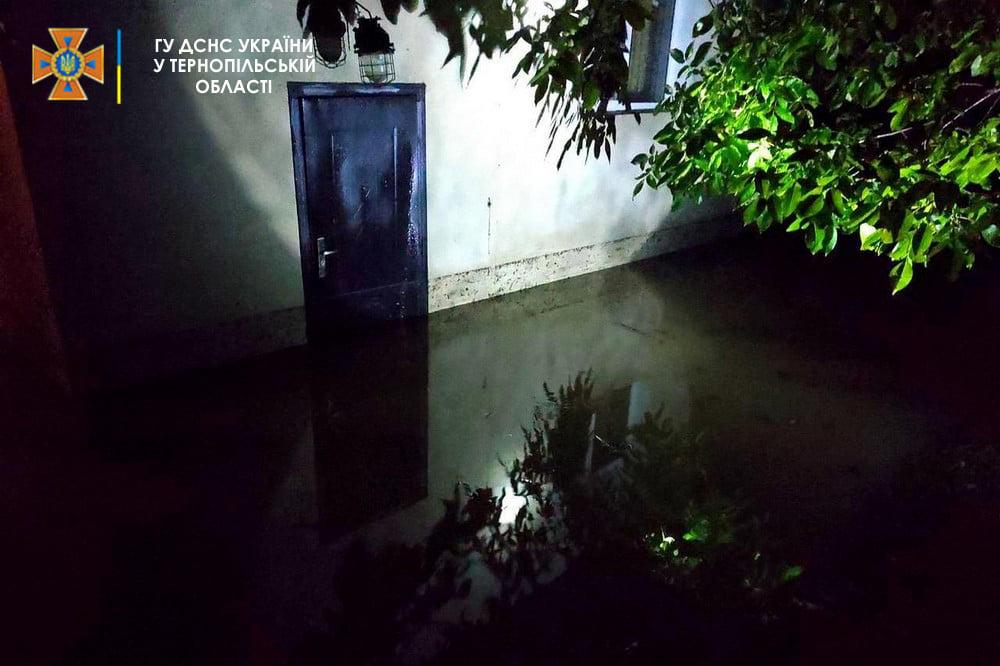 Підтоплення, повалені дерева та без світла: що негода наробила на Тернопільщині (ФОТО)
