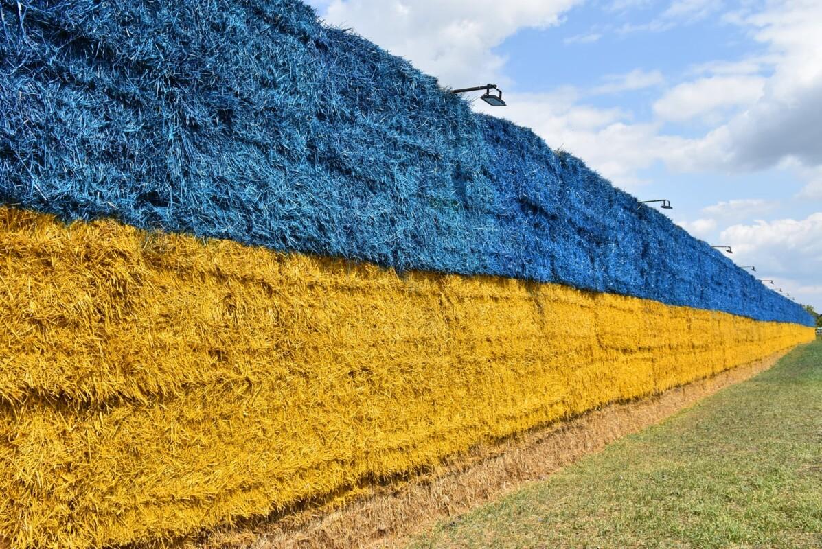 У селі на Тернопільщині встановили національний рекорд України (ФОТО, ВІДЕО)