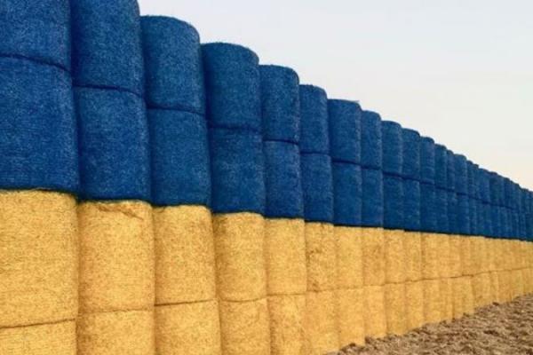 Знову рекорд: на Тернопільщині встановлять патріотичний Національний рекорд України