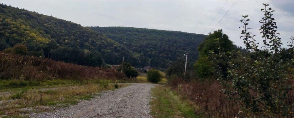 Пішки або конем: автобус припинив їздити в село на Тернопільщині через погану дорогу (ВІДЕО)