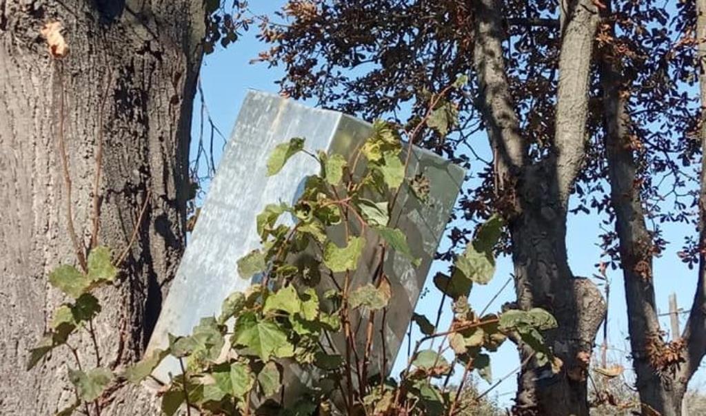 Смітник на дереві: вандалізм вчинили невідомі на Алеї Героїв у Бучачі (ФОТО)