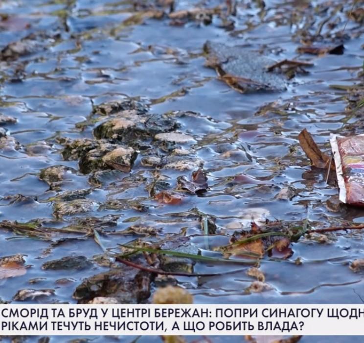 Сморід та бруд у центрі Бережан: попри синагогу щодня ріками течуть нечистоти, а що робить влада? (ВІДЕО)