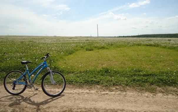 У Шумську, поки мама була на шкільних зборах, її велосипед вкрав шкільний кочегар